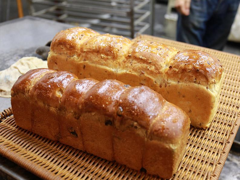 パンは生き物