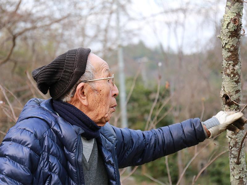 その土地のことはその土地の年寄りに聞く