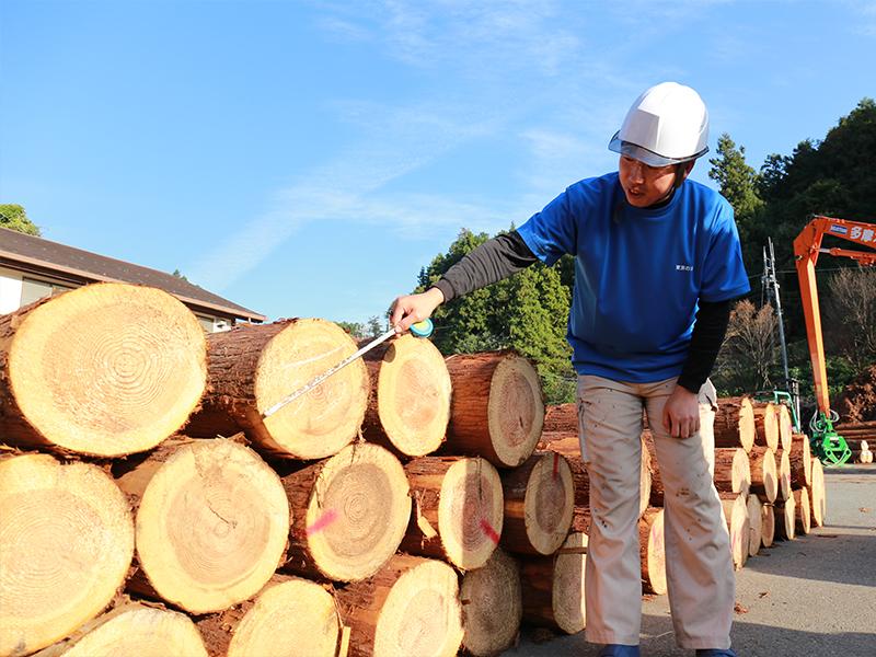 ボランティア活動が原木市場での仕事につながった