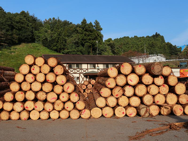 原木の価値ごとに並べて,売る