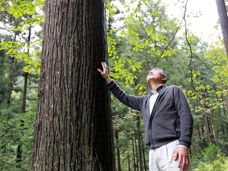 子どものころから林業家になるつもりだった