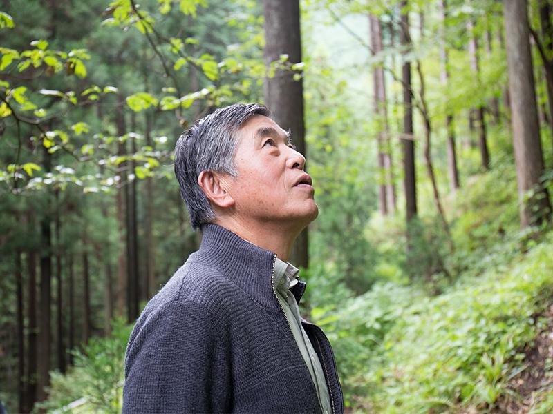 林業では百年の単位で考える