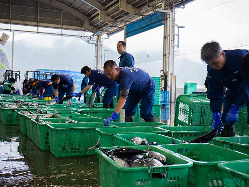 <ruby>漁<rt>りょう</rt></ruby><ruby>師<rt>し</rt></ruby>さんと<ruby>地<rt>ち</rt></ruby><ruby>域<rt>いき</rt></ruby>のために働く