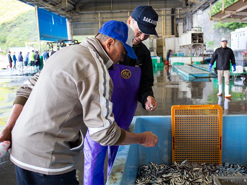 <ruby>漁<rt>りょう</rt></ruby><ruby>師<rt>し</rt></ruby>さんにいい魚をとってもらう