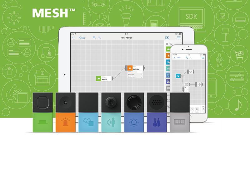 「MESHプロジェクト」のリーダー