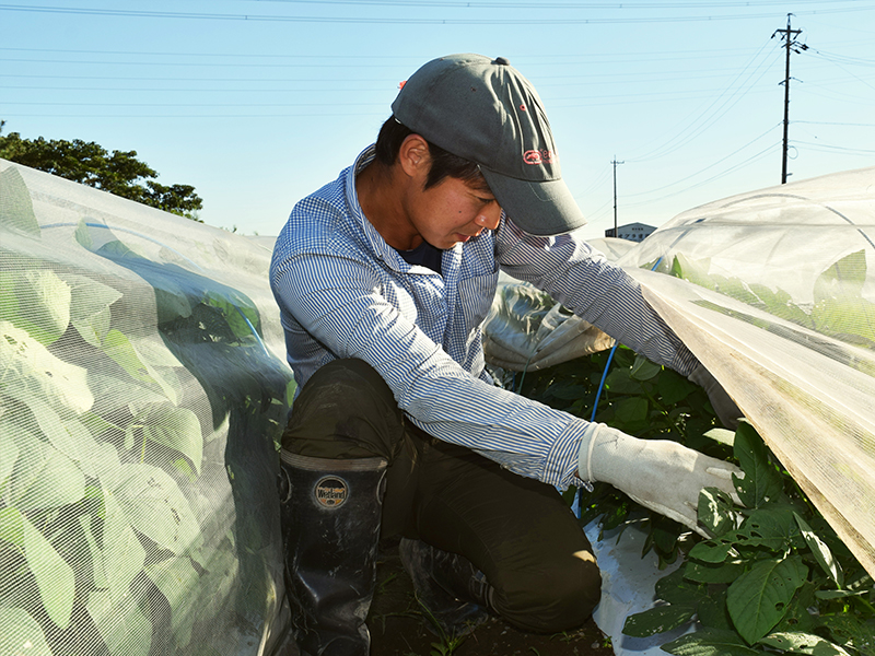 多くの人が魅力を感じられる農業を目指して