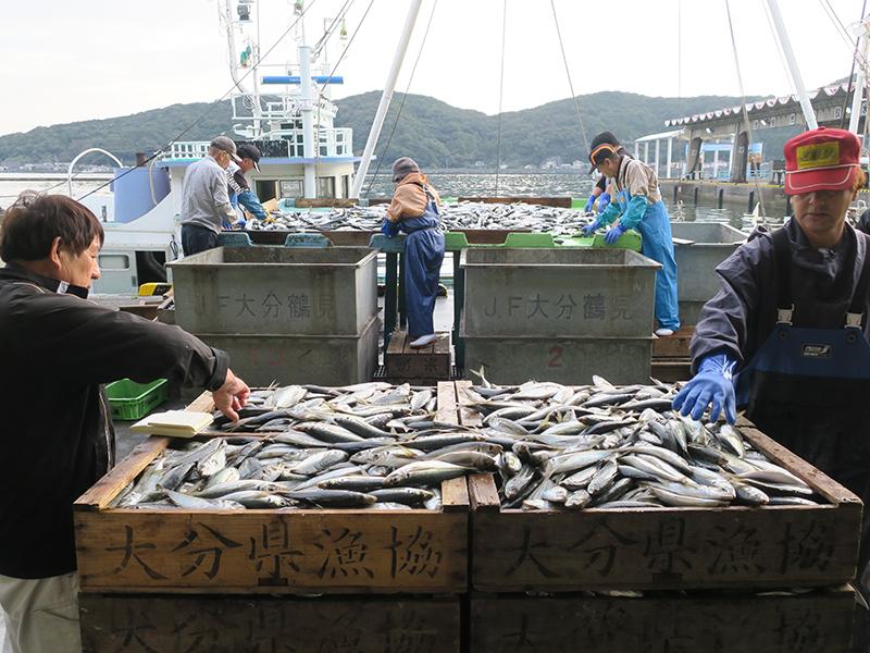 鶴見の漁業と町を元気づける正直な物づくり