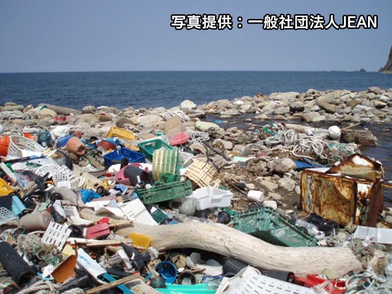 海ごみの調査・分析で問題の解決を目指す