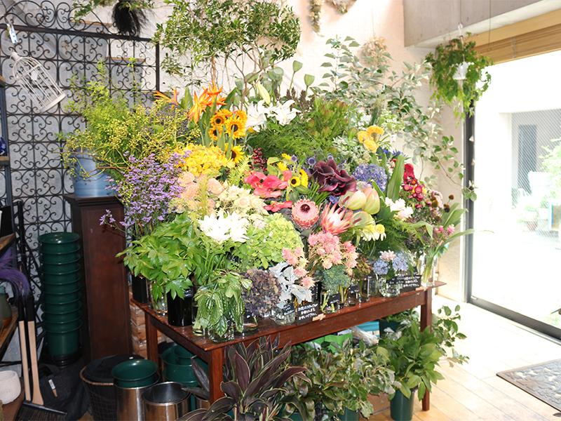 お客さまそれぞれの目的に合った花を選んで、<ruby>販<rt>はん</rt></ruby><ruby>売<rt>ばい</rt></ruby>する