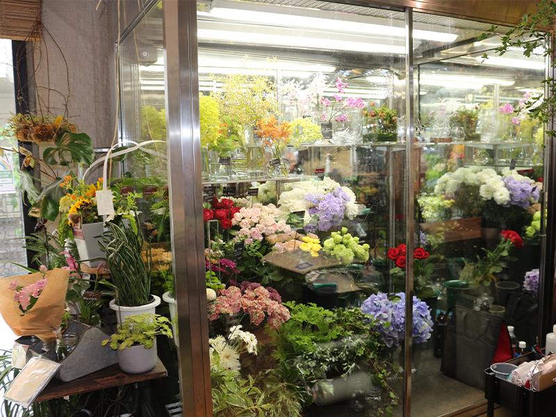 市場にあるたくさんの花の中から、求める花を<ruby>探<rt>さが</rt></ruby>して仕入れる